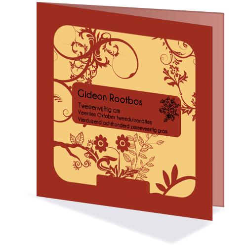 Geboortekaartjes ontwerpen - Gideon